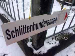 Schlittenhunde3