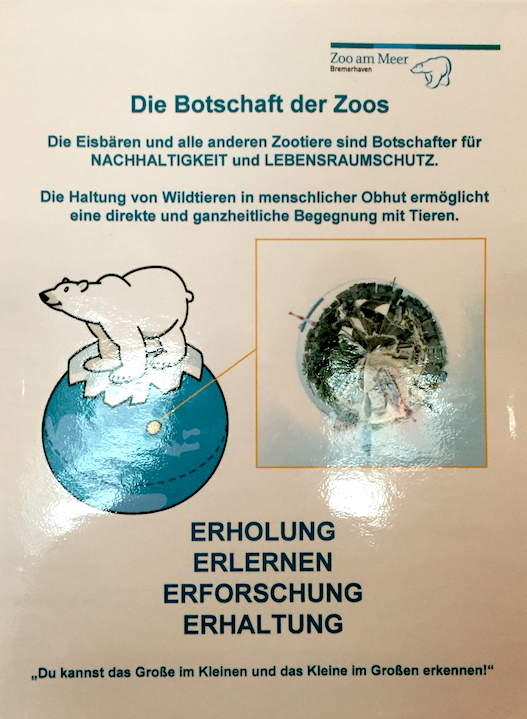 Eisbären Zoo Bremerhaven.jpg